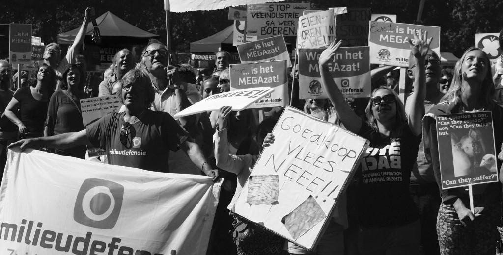 MEGAzat Manifestatie 29-8-2015 DEN HAAG